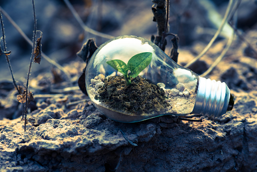developing a business considering environmental awareness
